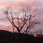 Sonnenuntergang in Erdhausen