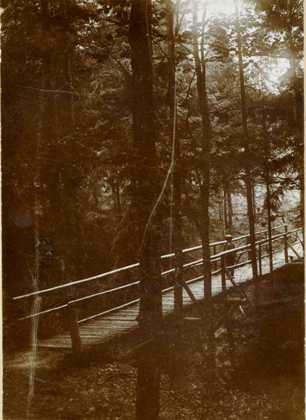 """""""Partie im Walde"""" 1905"""